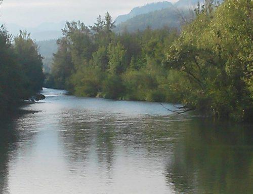 Vellach Fluss