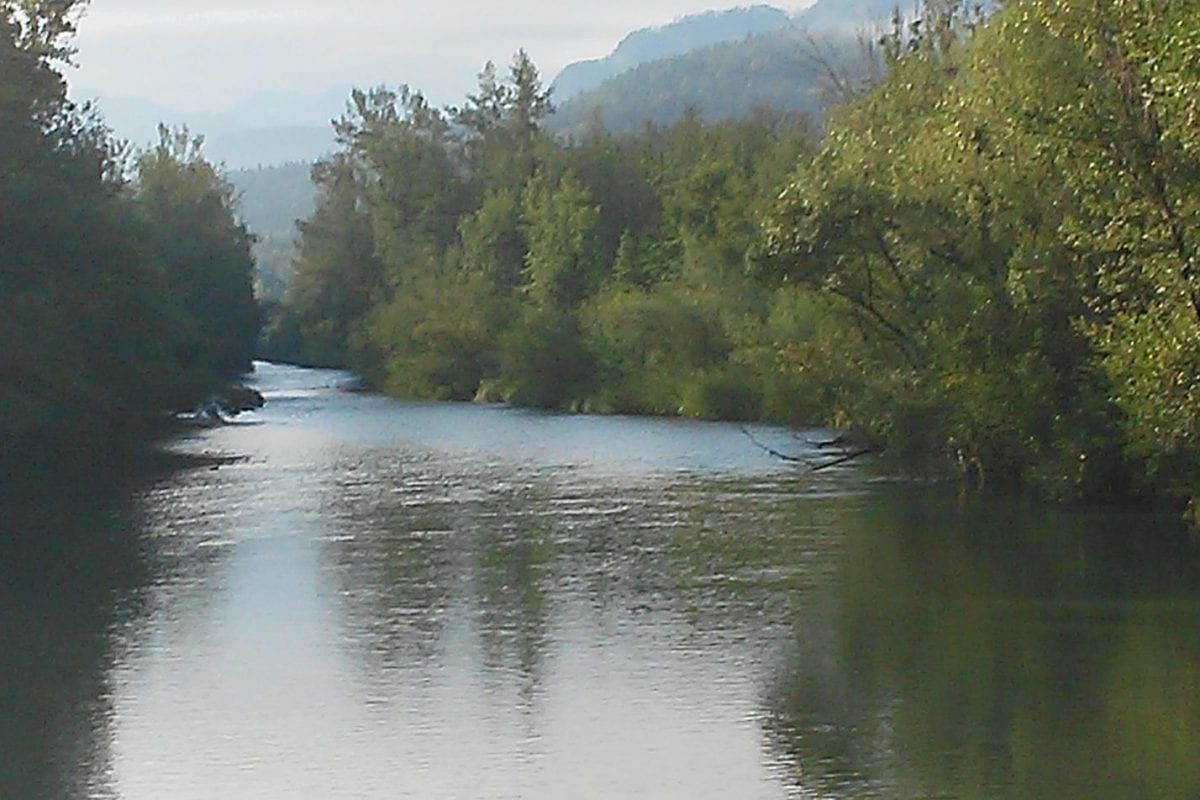 Vellach Fluss an der Draumündung
