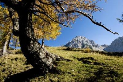 Landschaftsbild-Matschacher-Alm-©-Kärnten-Werbung-Fotograf-Zupanc