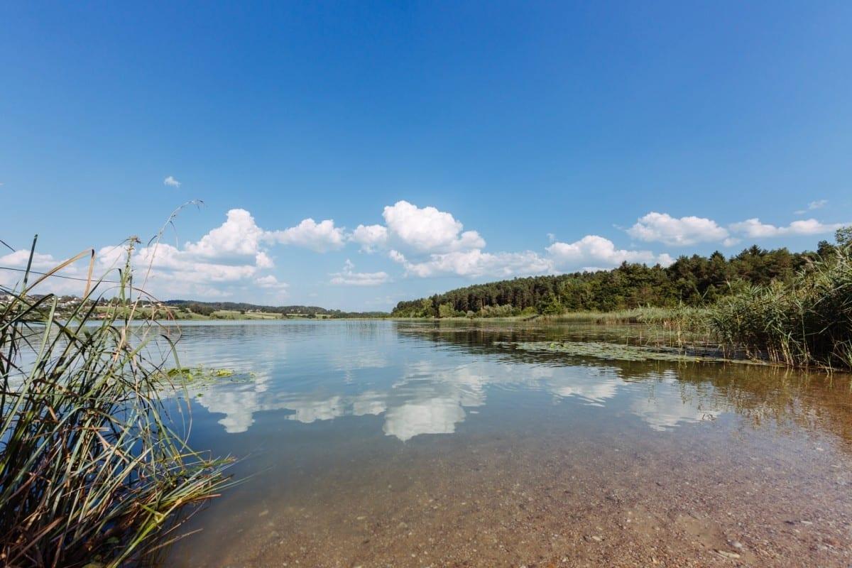 Natur Strand am Turnersee Ferienwohungen Katharina Jernej in Südkärnten