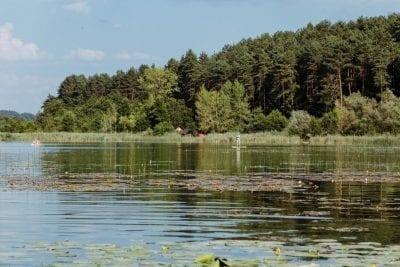 Naturbelassener Strand am Turnersee Ferienwohungen Katharina Jernej