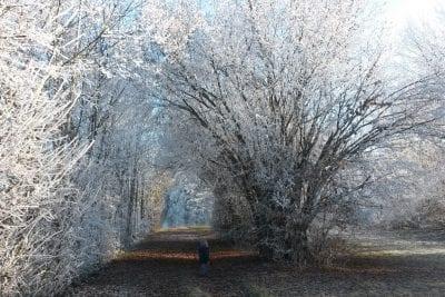 Winterspaziergang zum Turnersee Ferienwohnungen Jernej Katharina Südkärnten
